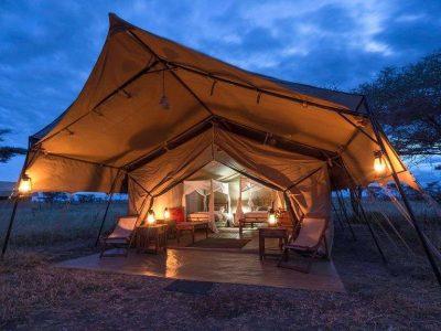 7 Days Tanzania Shared Safari