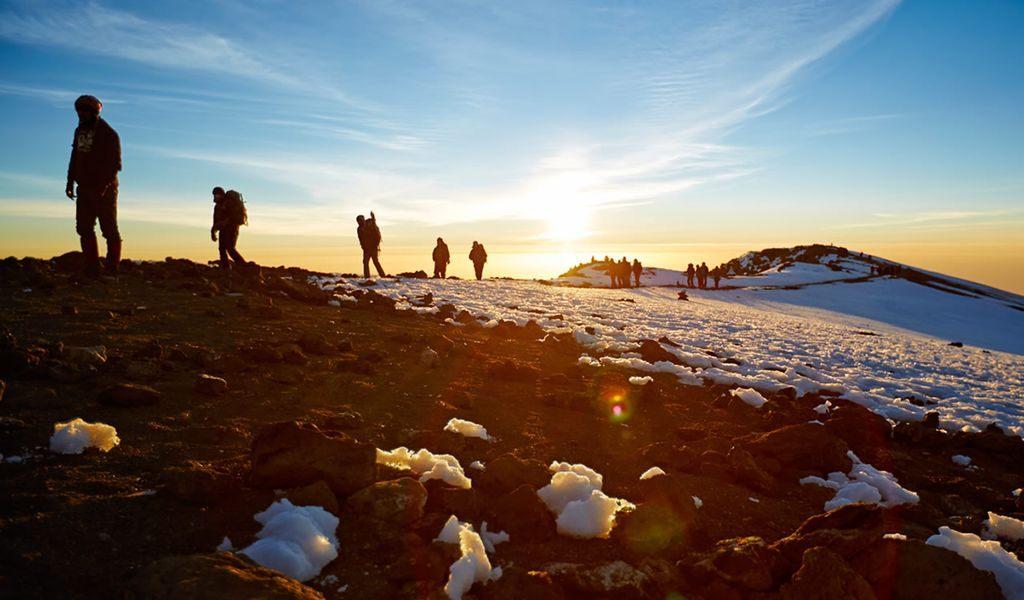 7 Days Shira Route Kilimanjaro Treks