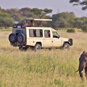 Private Safari