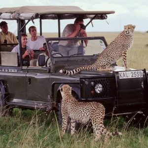 Masai Mara Safari 3 Days