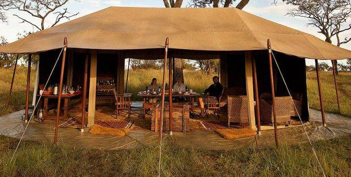 5 Days Budget Lodge Safari