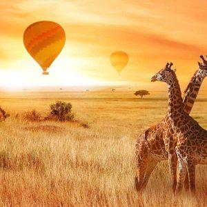 Kenya Affordable Tours