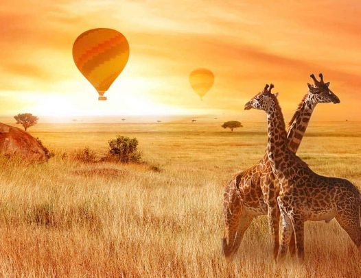 7 Days Tanzania Safari & Beach Holidays