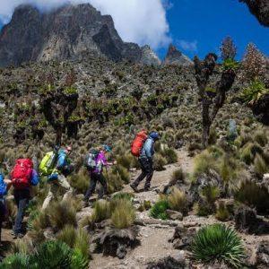 Mt.Kenya Treks