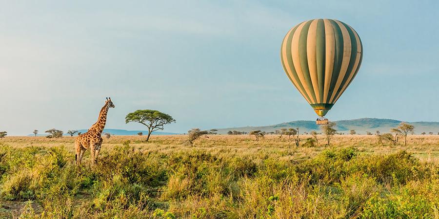 20 Days Tanzania Safari