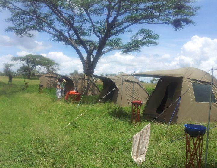 5 Days Tanzania Budget Camping Tour