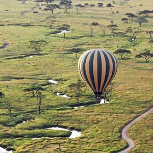 5 Days Serengeti Safari