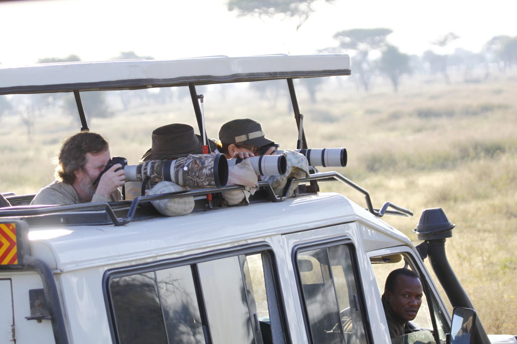 Shared Safari