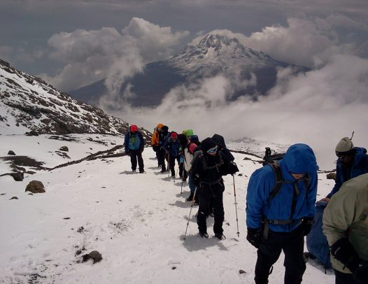 hike kilimanjaro tour and safari