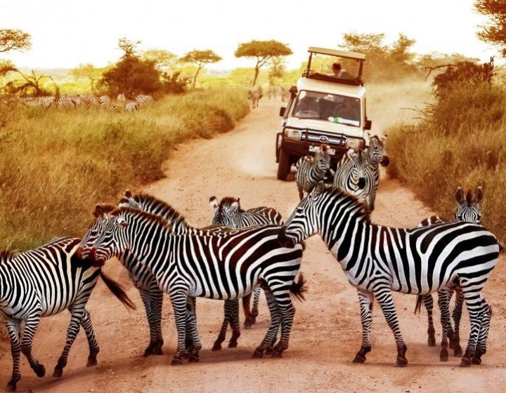 4 Day Budget Tour in Tanzania