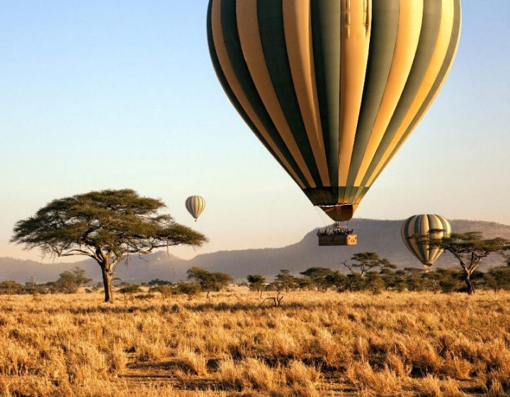 12 Days Tanzania Safari and Zanzibar Beach Holiday 1