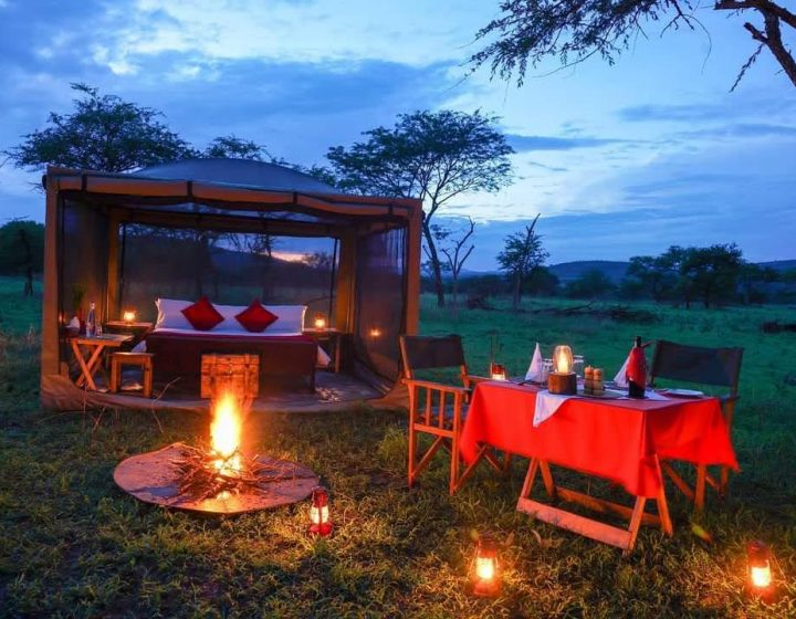 2 days lodge safari in Tanzania