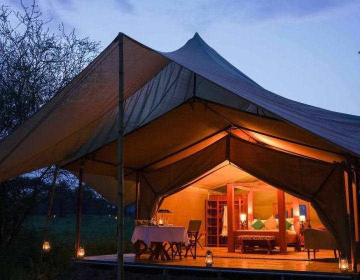 5 Days Tanzania Lodge Safari Package