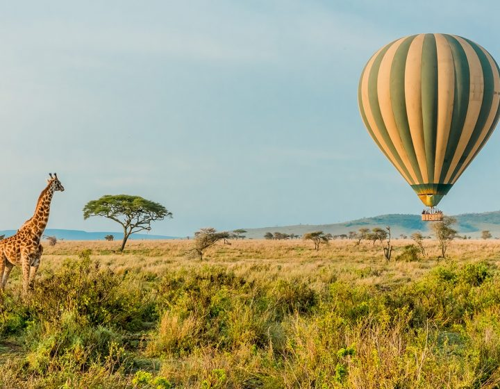 6 Days Tanzania Lodge Safari Package